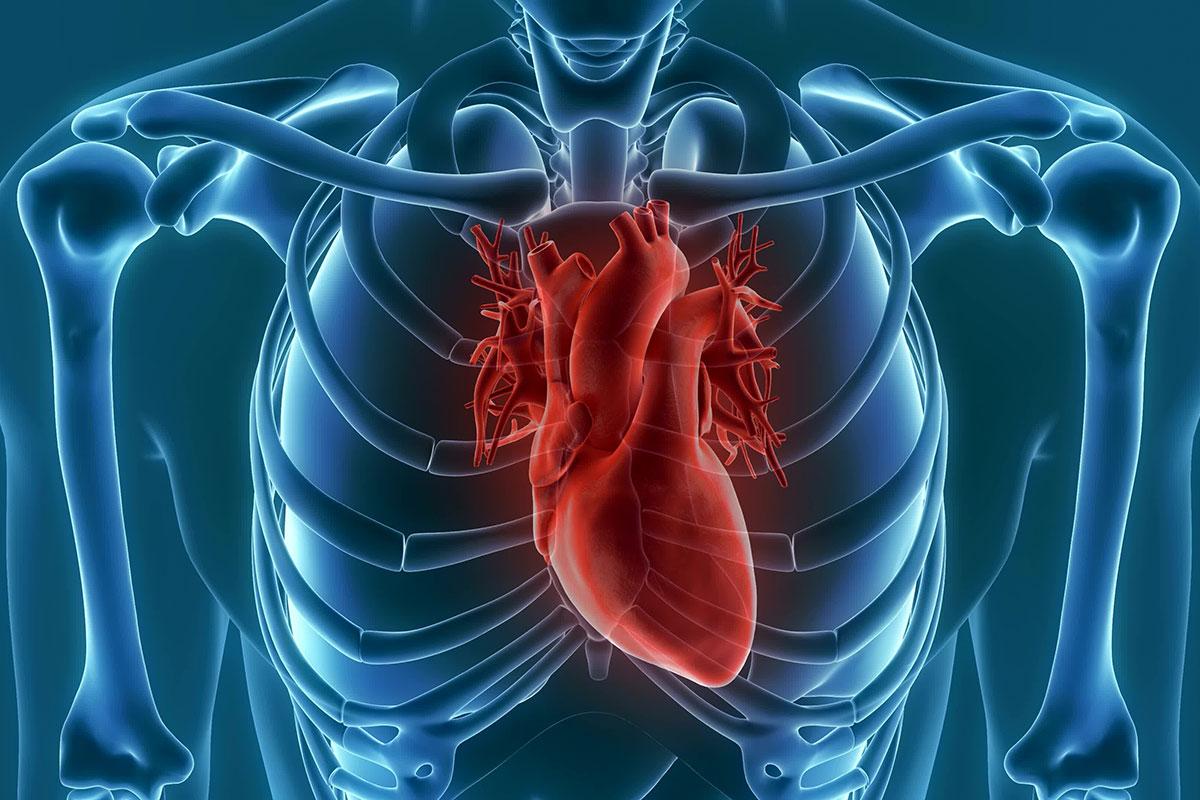 EP-Herzkatheter sind wertvolle Lebensretter (Foto: unlimit3d, Fotolia)