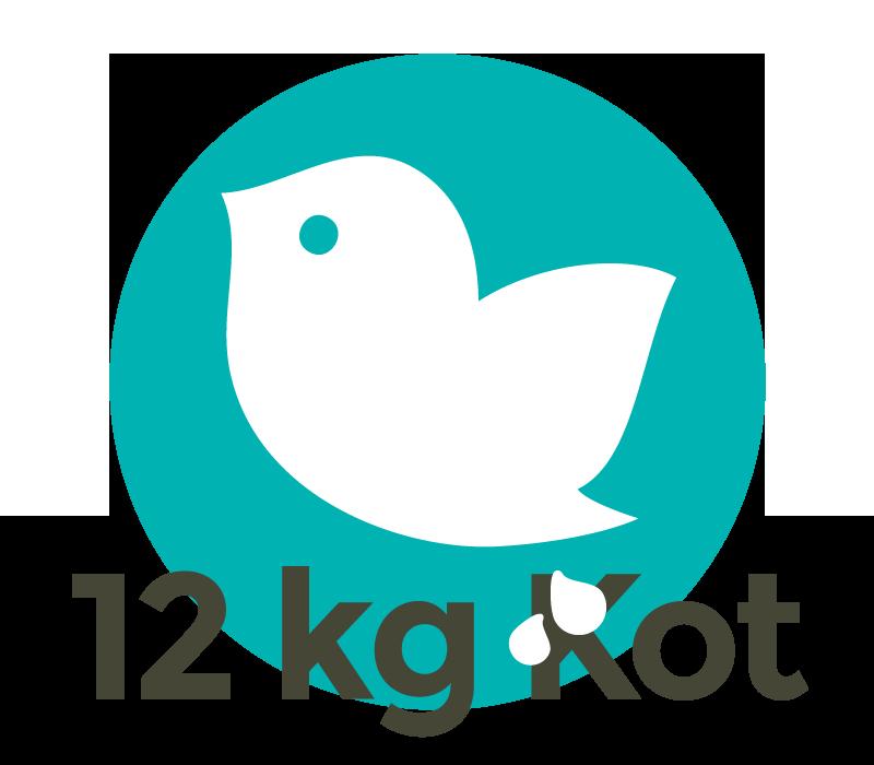 Eine Taube verursacht pro Jahr bis zu 12 Kilogramm Nasskot