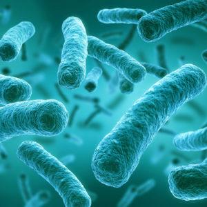 Legionellen sind Keime und als diese in geringer Anzahl ein natürlicher Bestandteil vom Grundwasser und von Oberflächengewässern (Foto: peterschreiber.media, AdobeStock)
