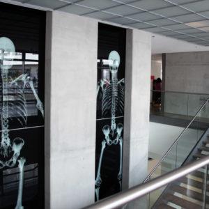 Gerade aus medizinischer Sicht war Röntgens Entdeckung bahnbrechend und legte den Grundstein für weitere wichtige Erfindungen und Entwicklungen innerhalb der Diagnostik wie wir sie heute kennen (Foto: Abfallmanager Medizin)