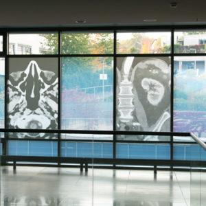 Nicht nur die Wände wurden durch die Kuratoren der Ausstellung am Universitätsklinikum Würzburg bedacht, sondern auch große Fensterflächen sind als Projektionsflächen künstlerisch einbezogen (Foto: Abfallmanager Medizin)